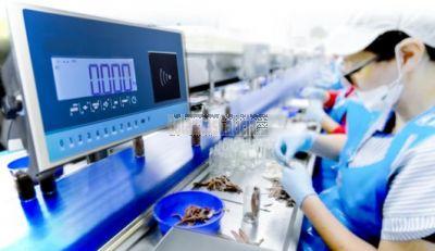 Sistema de Control de Peso para Líneas de Producción BG-RFID-410