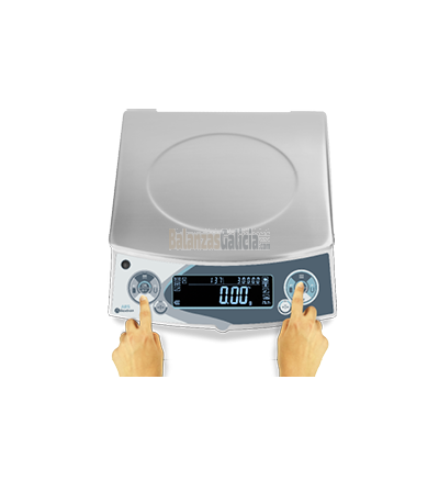 Balanza de Precisión para Pinturas - Serie BG-ABS
